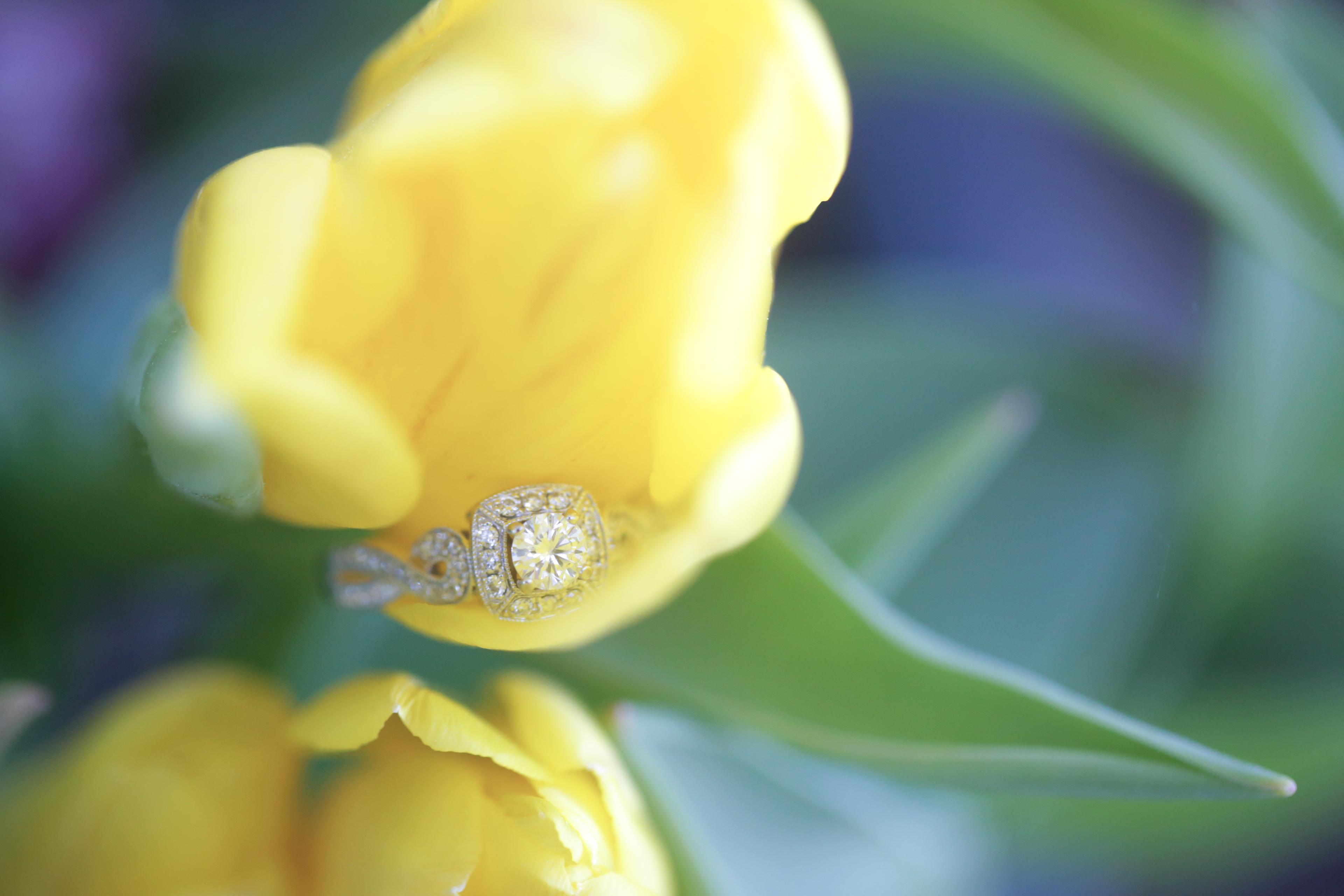 Tyla and Scott Ashland Engagement session cherry blossom (47 of 160).jpg