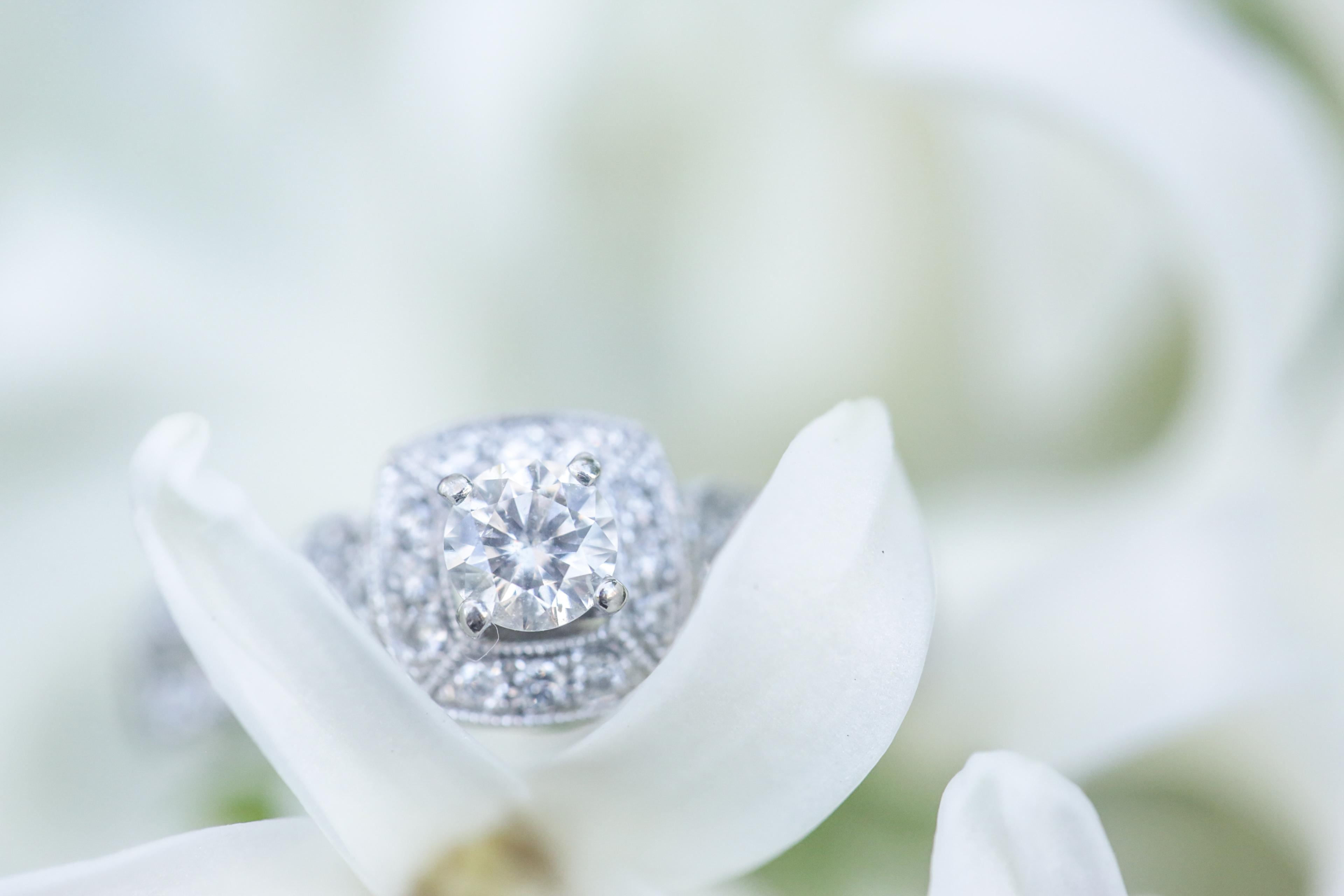 Tyla and Scott Ashland Engagement session cherry blossom (53 of 160).jpg