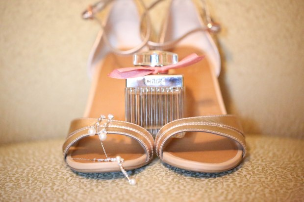 virginia wedding country pink southern belle (1 of 1)-7