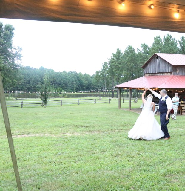 virginia wedding country pink southern belle (1 of 1)-93